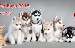 family pet expo dublin 2015